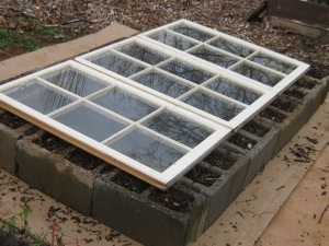 A finished cinder block cold frame with window covers.